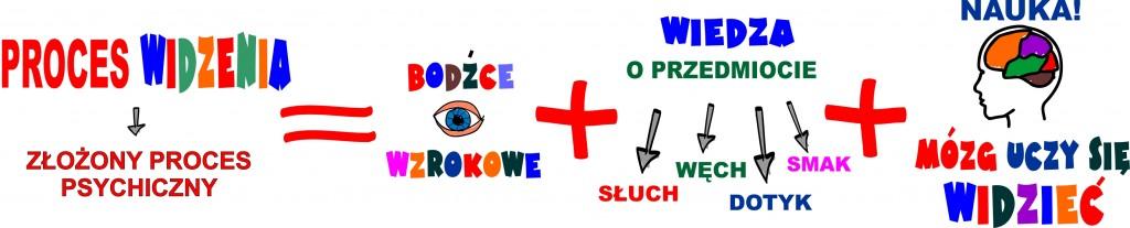 proces widzenia a bodźce wzrokowe - grafika