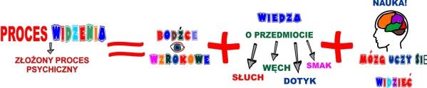 Proces widzenia jako złożony proces psychiczny - grafika, mamotatopokazmi.pl