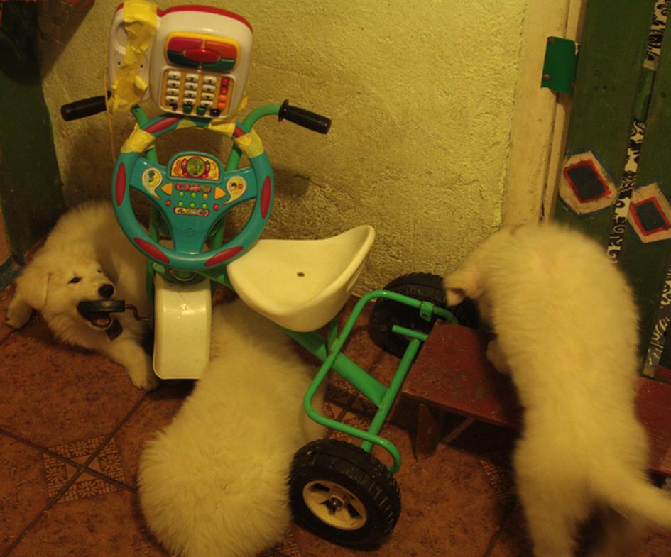 konstrukcje z gotowych zabawek 2