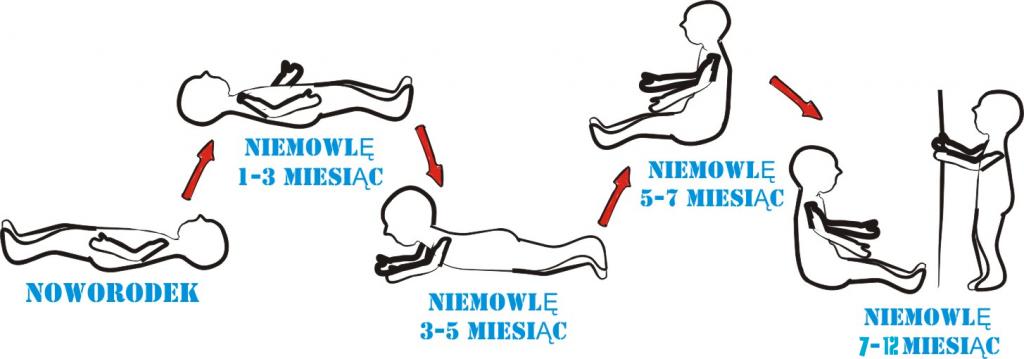 Etapy rozwoju niemowląt - mamotatopokazmi.pl